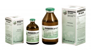 Marbocoli 100 mg/ml